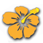 Aloha International Employment