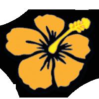 Aloha International Employment, Inc.